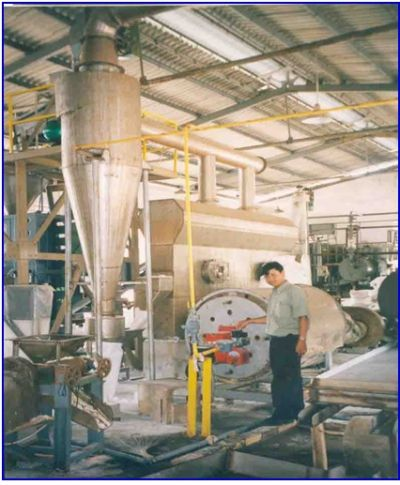 The continuous fluidized bed dryer and author.